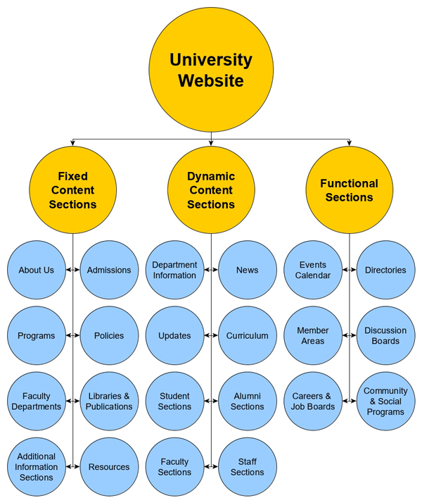 A university website is a complex digital ecosystem.